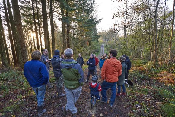 Community Trees & Woods