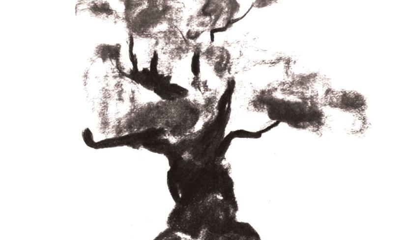 DSC_13421