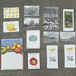 CommonGroundProducts_Apple Day Pack