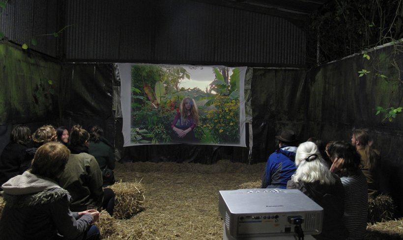 Harvest Film Festival